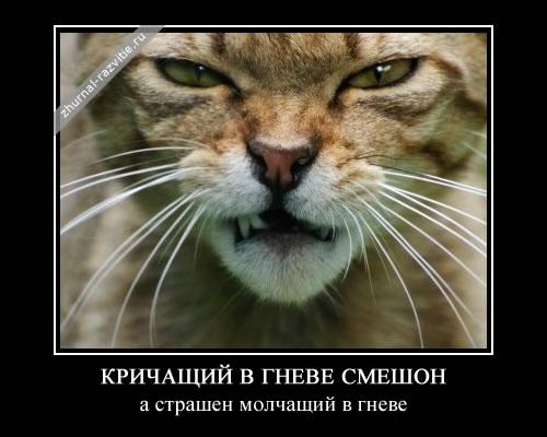 кричащий в гневе смешон, а страшен молчащий в гневе