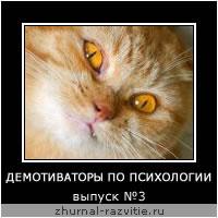 Демотиваторы с котами. Выпуск №3